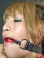 Hatsuka Kobayashi Asian with ball in mouth is tied and fingered